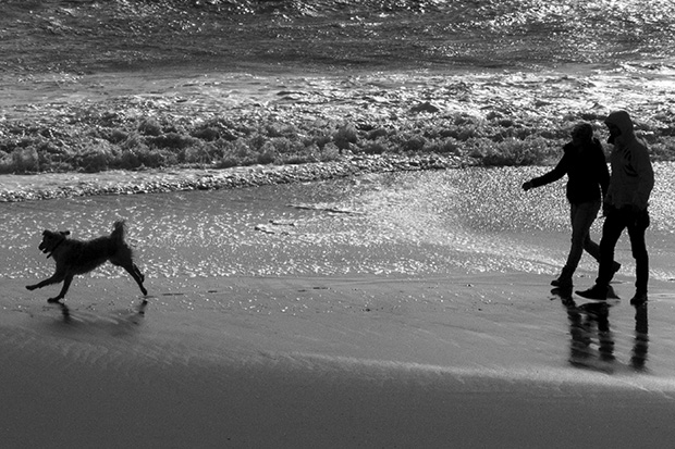 © Neil Turner, February 2014. A couple walk their dog on the beach between storms.