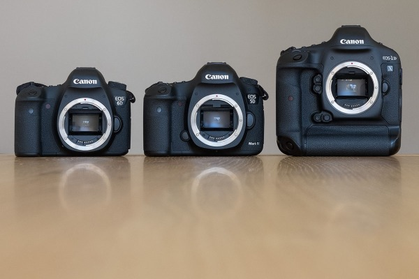 The Canon EOS6D, EOS5D MkIII and the EOS1DX